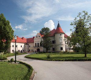 TZ-Zapresic-Dvorac-Luznica-cover